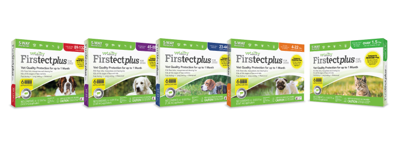 Vet Firstect-6-ct product boxes
