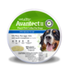Vetality Avantect Flea Collar for Dogs